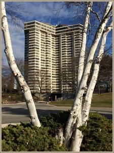 Applewood Landmark Condo