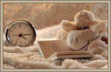 Book and stuffed bear
