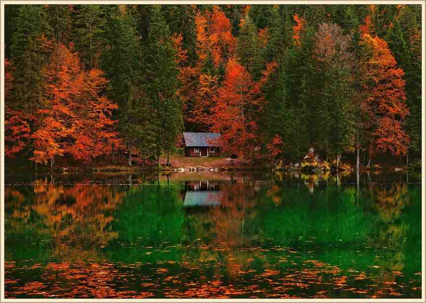 autumn-trees-and-cabin